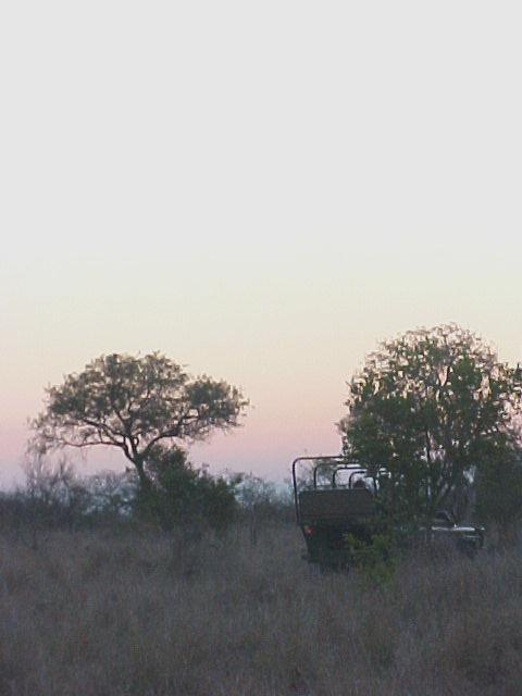 As the sun set down, we drove along through the African wilderness.