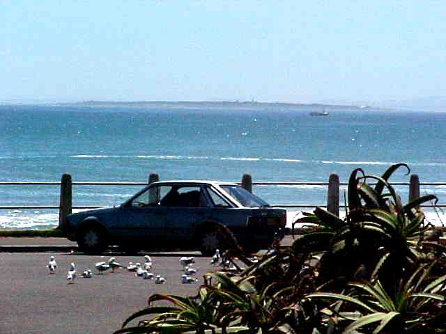 At the Sea Point, with the view on the Robben Island, 6km off the coast.