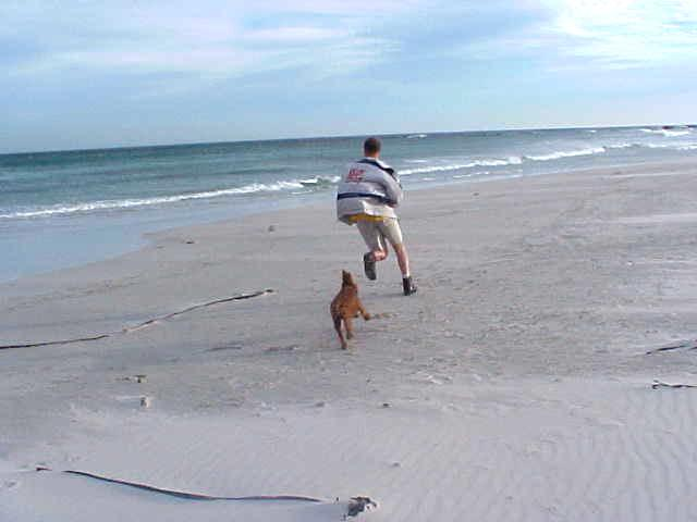 At the beach, for the exercise of the dog (and some for me, playing that young and restless teen)...