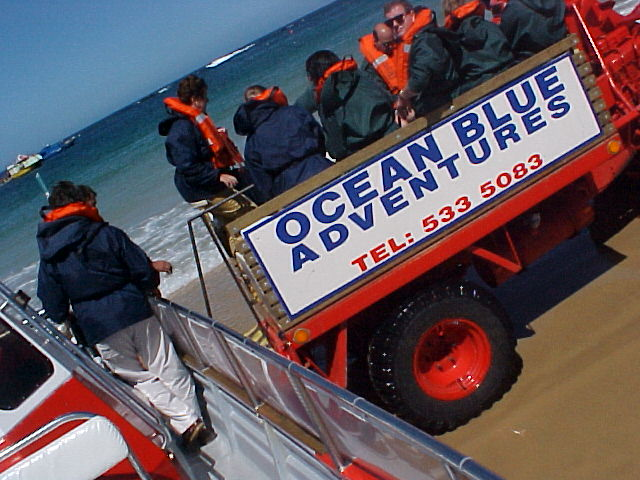 When the boat landed on the beach again, we still would not have to touch the sand. We were loaded into a big open truck which took us all bag to the Ocean Blue Adventures office.