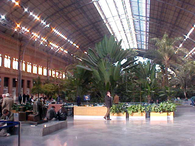 Mmm, the garden inside the Artoche Renfe train station. No more palm trees please!!!