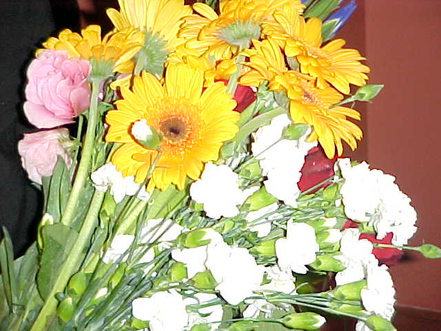 I must add, flowers are expensive here! But arent they nice?