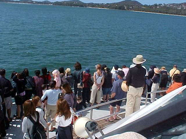There it was, just a few seconds every time. Crazyness among the Japanese because there was A DOLPHIN!