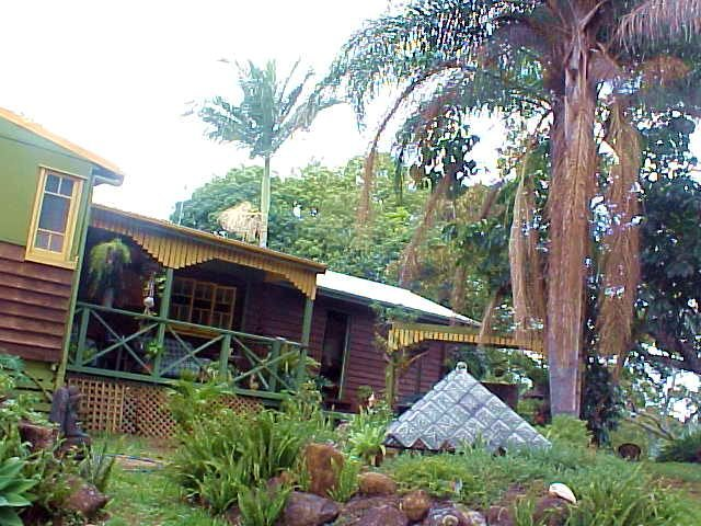 And Mark and Del live in this fabulous home, surrounded by the rainforest.
