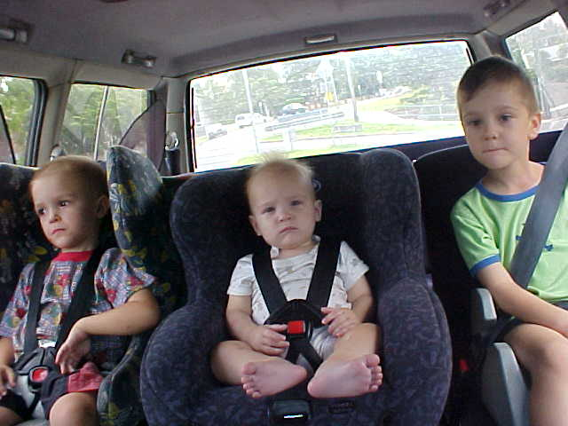 The funky bunch in the back of the car, on our way to the nature park. Left to right: Blade, Storm and River.