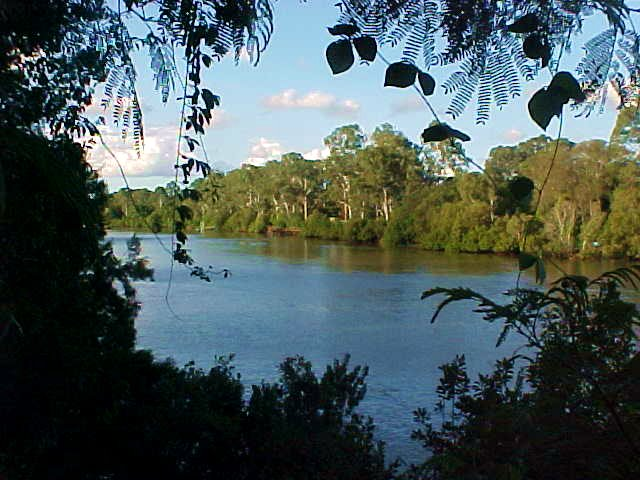 The tropical forrest offered this opening, where I saw this excellent view on the river. Sometimes catfish can be seen here.
