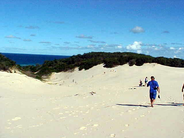 We walked on top of this huge sand dune.