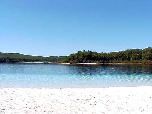 May I present to you: Lake McKenzie! Pure filtered fresh water and rain water. Only 8 metres deep.