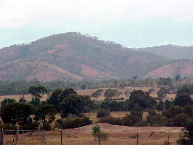 As photographed along the road south of Rockhampton.