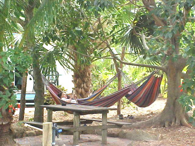 Hammocks have never looked so attractive! I have to lay in that once!