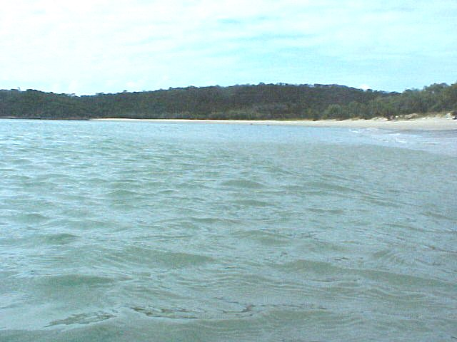 The nearby beach as seen from in the water...