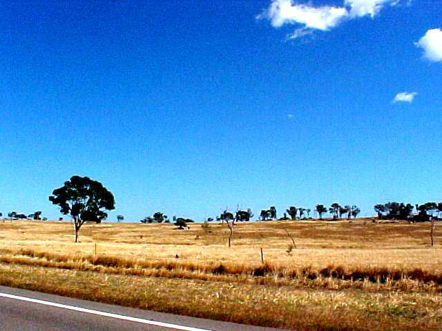 On the hot road towards Townsville (1)
