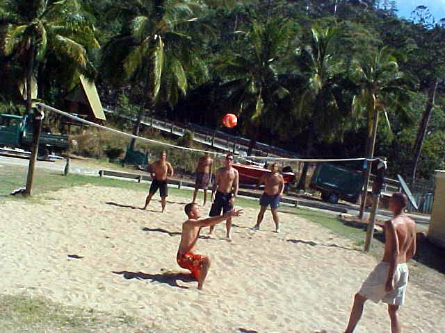 Tanned action at the volleyball court.