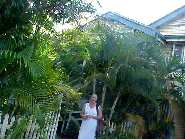 My hostess Anne Falcone took me to her home in Edge Hill. Not only it is a charming old Queenslander home, but also very surrounded by palms.