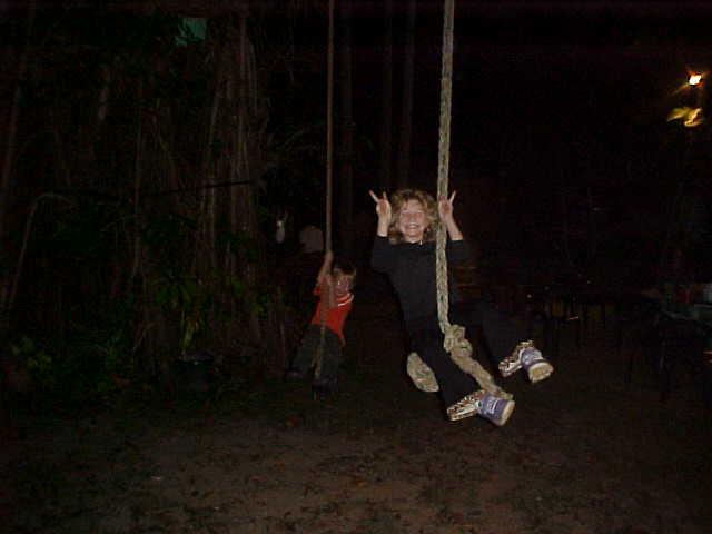 The kids loved to swing in the ropes on a huge tree.