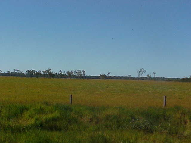 On our way to the Murray river...