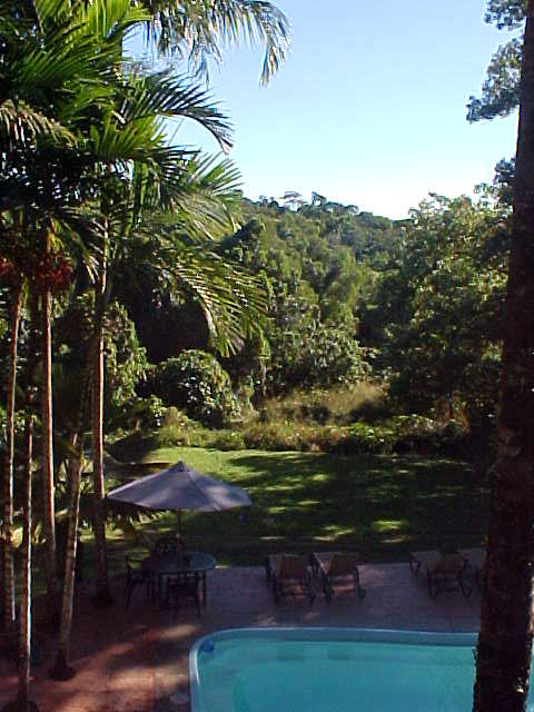 The view from the first floor of the Treehouse Hostel.