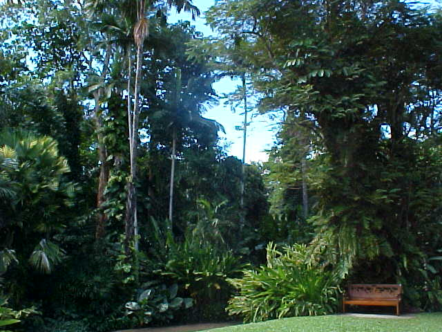Naturally I had to see some more of this big botanic garden.