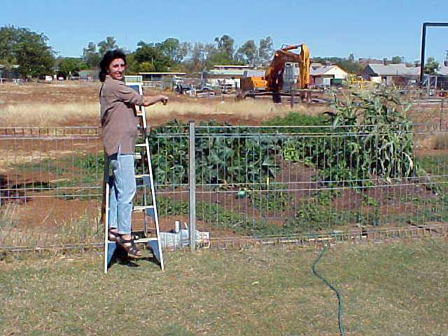 Annette Chappell proudly shows her own little vegetable garden, growing in the good hot Outback!