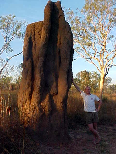 Along the long road towards Darwin, I of course had to pose with one of those giants termite hills that fill up the scenery around here.