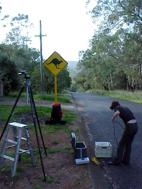 Fran found this spot with the bullet-shot kangaroo sign in a Perth suburb. Time to build up the studio again!