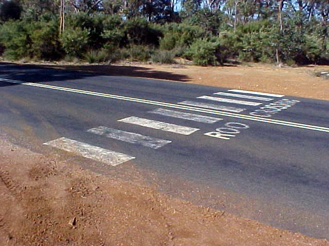 I just passed the one and only official kangaroo crossing in Australia!