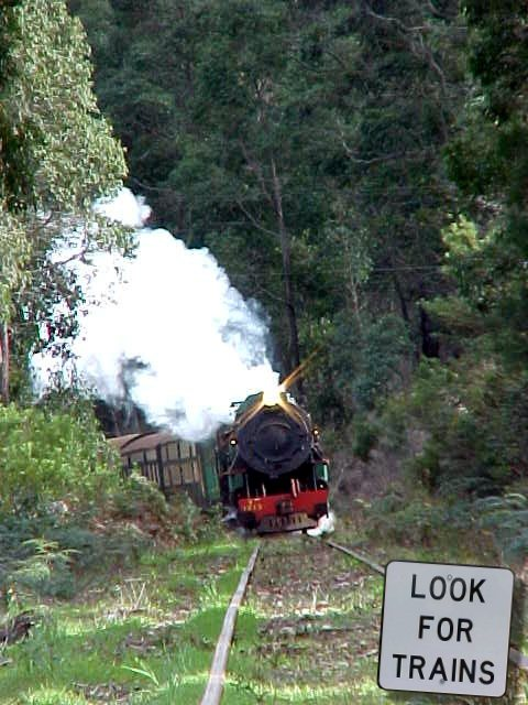 Before we got back, I of course had to eternalize THE attraction of Pemberton: the steam train. After problems with the high insurance fee, the train was back again!