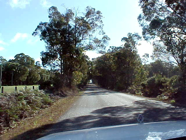 On the road from Mt. Barker to Perth...