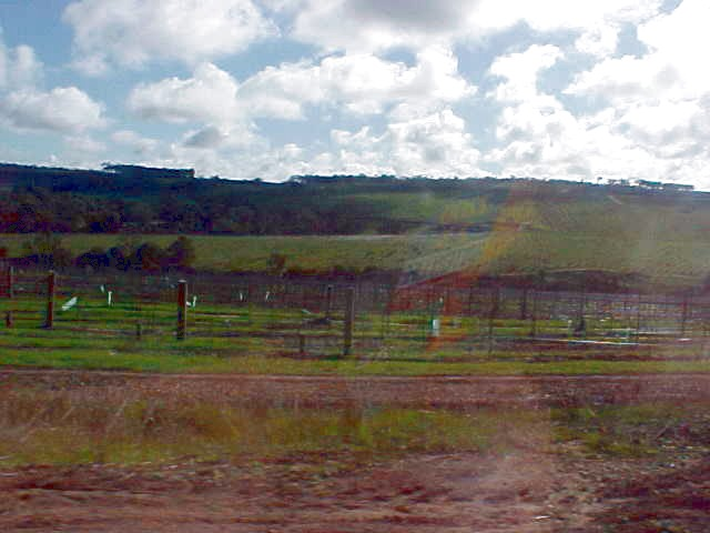 Wineries, and wineries, and wineries...