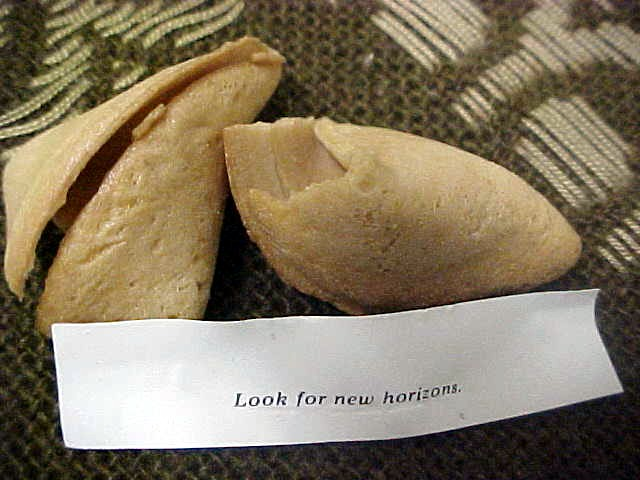 After dinner I got this fortune cookie. Why do I always get those vague fortune tellings?