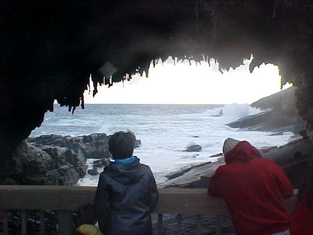 The admirable Admirals Arch, created through erosion by wind and water.