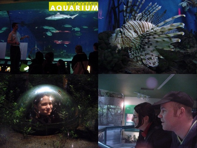 Fiona took me to the Vancouver Aquarium in Stanley Park.