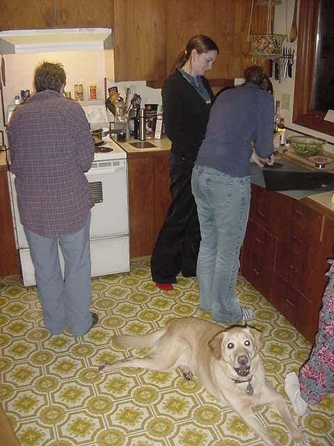 Around dinnertime Anna and Sarah came over again...