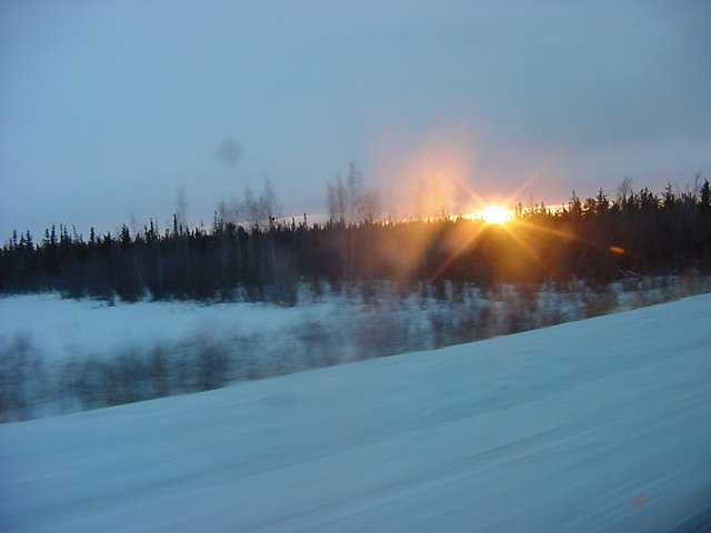 And the more north we got in the Northwest Territories, the less trees there were....