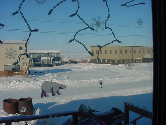 Polar bears in the streets of Kugluktuk? No, I just woke up and looked through the window.