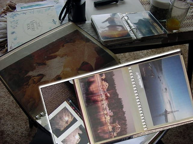 - Photography is my biggest hobby,   and Dana shows me photo albums of the islands natural sceneries.