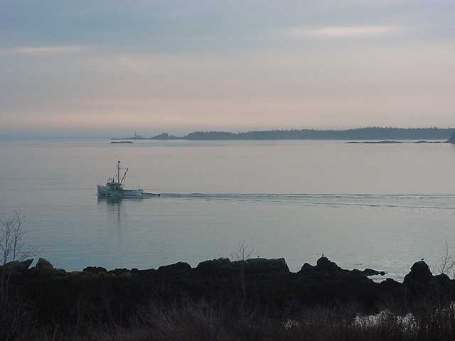 8am on Deer Island. The first fishing boats head out on the still water.