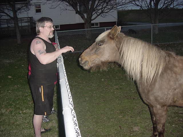 Meet Sarah, Cynthias own and favorite horse.