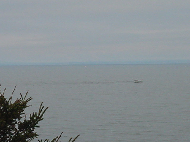 Isnt great to see fishing boats just off shore fishing for lobsters - straight from your office window?