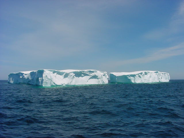 The story goes that these icebergs are over 10,000 years old. The ice cap of the North Pole is so old that whatever breaks off and starts to float around is just older than human civilisation. Guess how clean the water from the ice is?