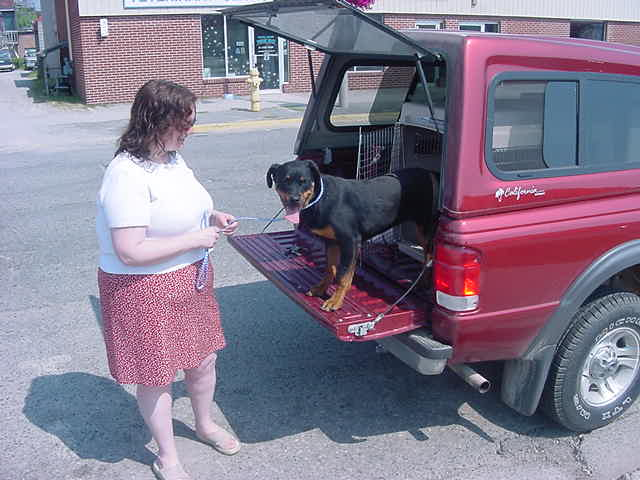 After months of taking care of this rottweiler, Cathy is selling him to a new owner. - Sometimes it is very emotional...