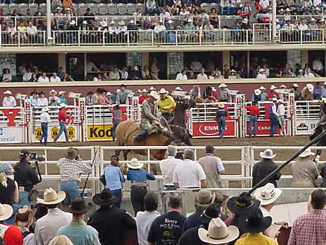 So we saw tough cowboys fall off, being rescued by the by-riders and some even made it with some spectacular real aerobatics.