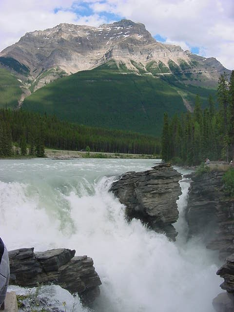 The water of the Athabasca River comes all the way from the Columbia Glacier (the largest ice field south of Alaska) about 70 kilometres south of here.