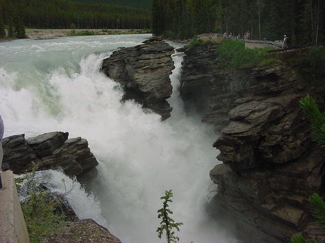 The Athabasca Falls thunders through a narrow gorge where the walls have been smoothed and potholes are created by the sheer force of the rushing water carrying sand and rock.