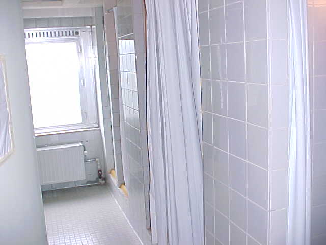The bathroom is on the hallway and contains 12 curtain showers, all unisex...