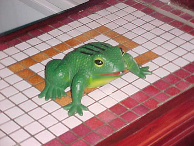 The talking electric FROG was left alone at the Cherwood Hotel, as the present from my hosts in Exeter...