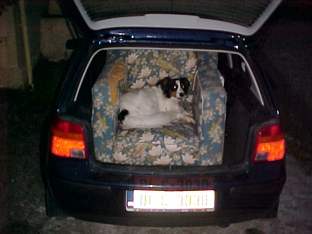 Molly the Dog is really being spoiled, she even has her own couch in the back of the car. ;-)