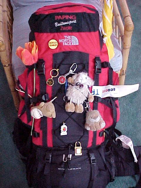 This is how my backpack looks now. I seem to collect things I guess...