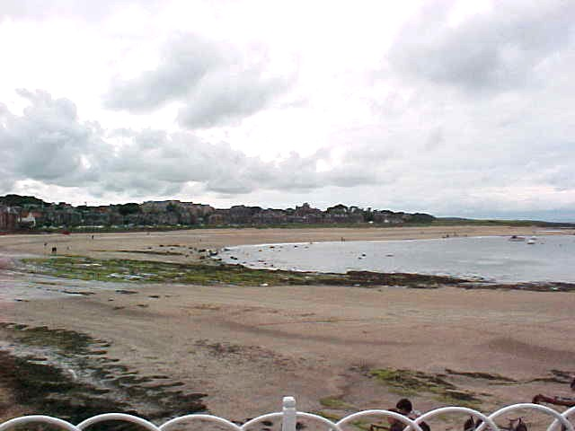 View from the North-Berwick harbour.