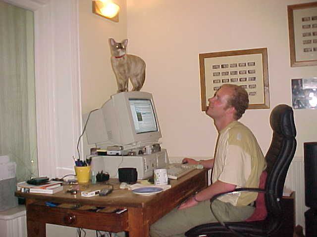 Nothing wrong with my neck, it is a problem with the cat... :-)